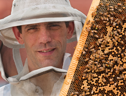 UNCG Professor Olav Rueppell looks into the camera with his bee hood on. To the right are bees on a bee frame.