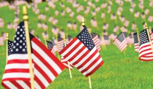 Photo of small U.S. flags during Veterans Day