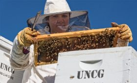 Photo of student holding honeybee comb with honeybees attached