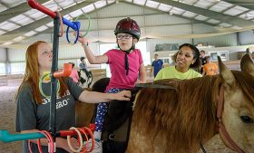 Camp staff observe child saddled on horse place rings