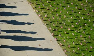 shadows along a sidewalk beside the EUC lawn filled with American flags