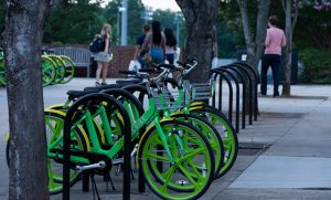 Photo of LimeBike bikes on campus.