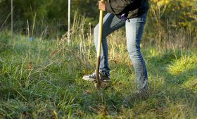 Photo of student (shown from the waist down) digging with shovel in a field