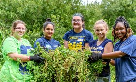 "Photo of a group of five female UNCG students cleaning up vegetation on the ""Bio Cell"" at the Greensboro Science Center"