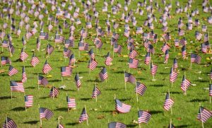 Photo of American flags on EUC lawn