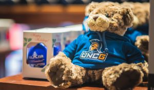 Photo of UNCG Teddy bear and ornaments.