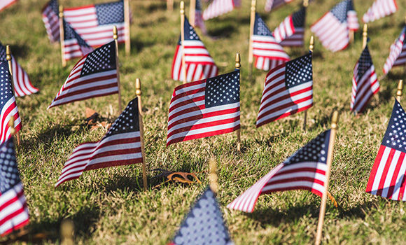 Photo of small American flags in field on campus