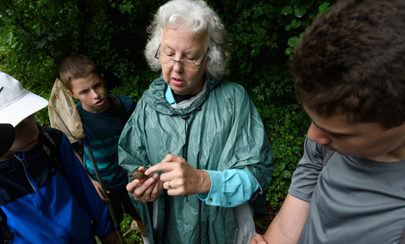 Ann Somers honored for STEM education, conservation