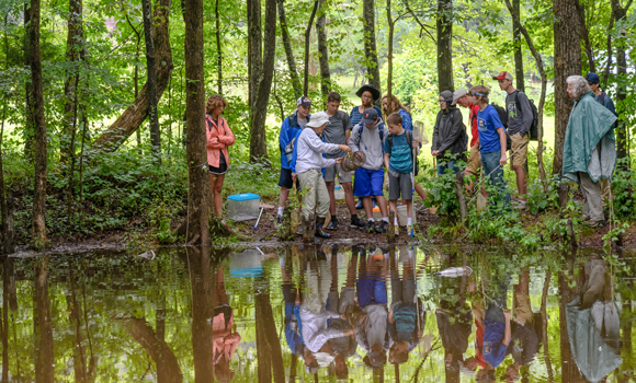kids and teacher at a swamp