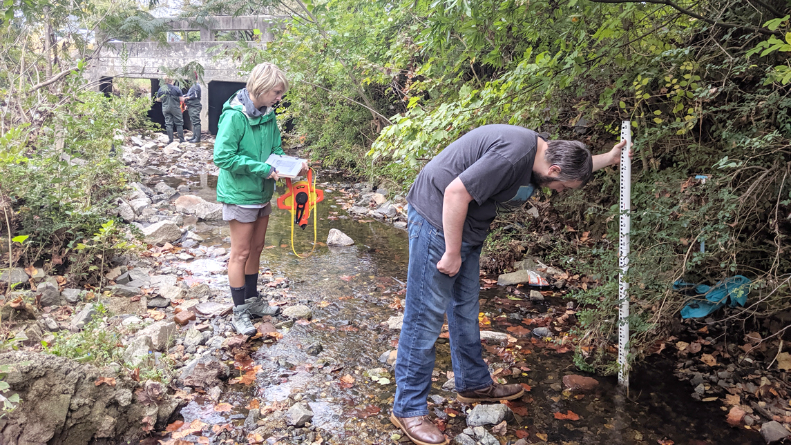 Geography, sustainability and environment students collect data in a creek bed