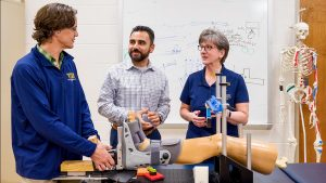 Research, innovation aim to improve knee joint health