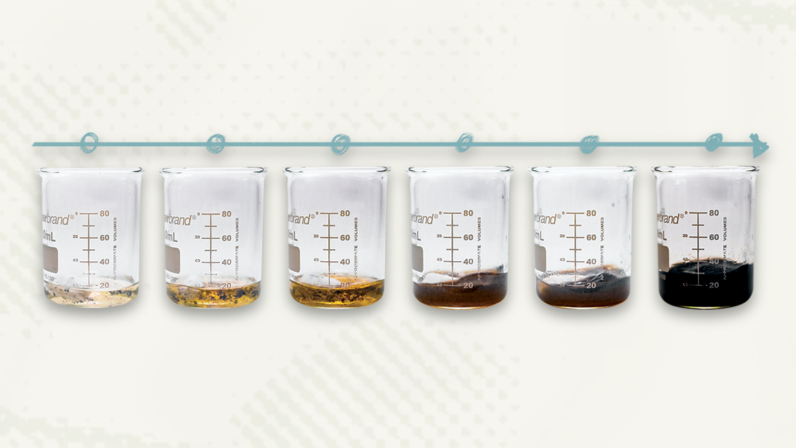 Photo of beakers with liquids of different colors
