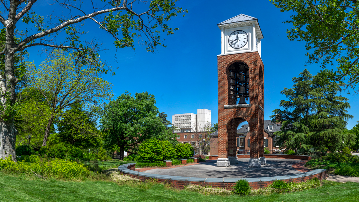 clock tower and trees