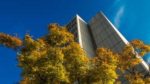 fall foliage with library tower and blue sky
