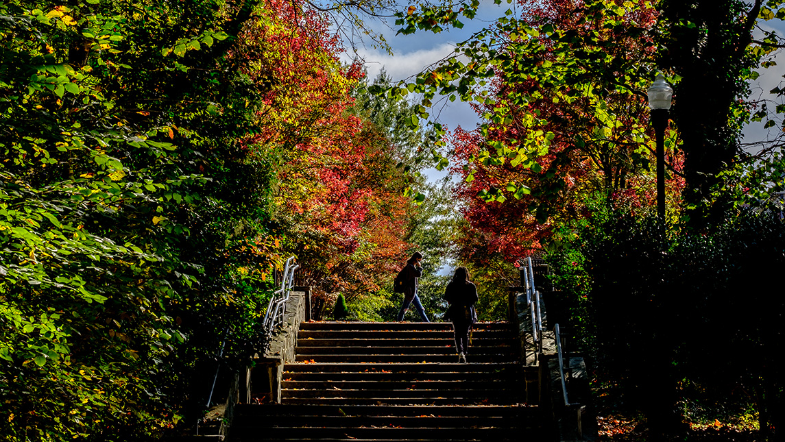 students walking up stairs on campus with fall foliage