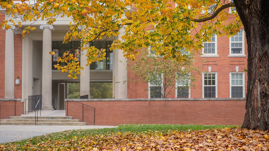 fall foliage with campus building in background