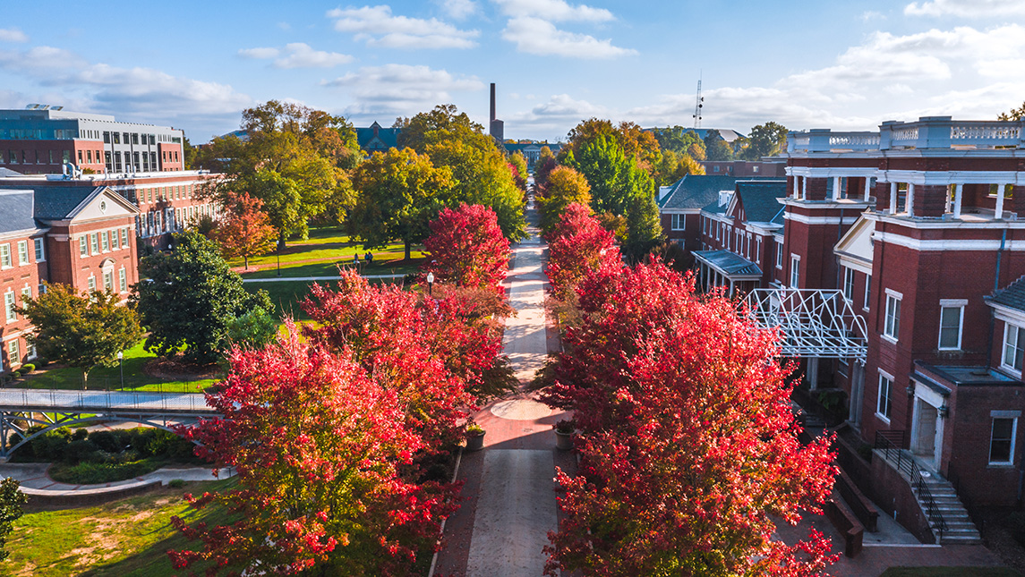 Aerial view of fall foliage on College Avenue