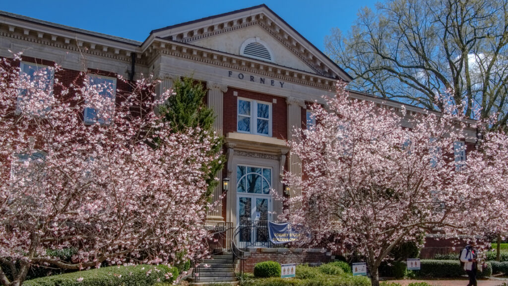 classical style building and cherry blossoms