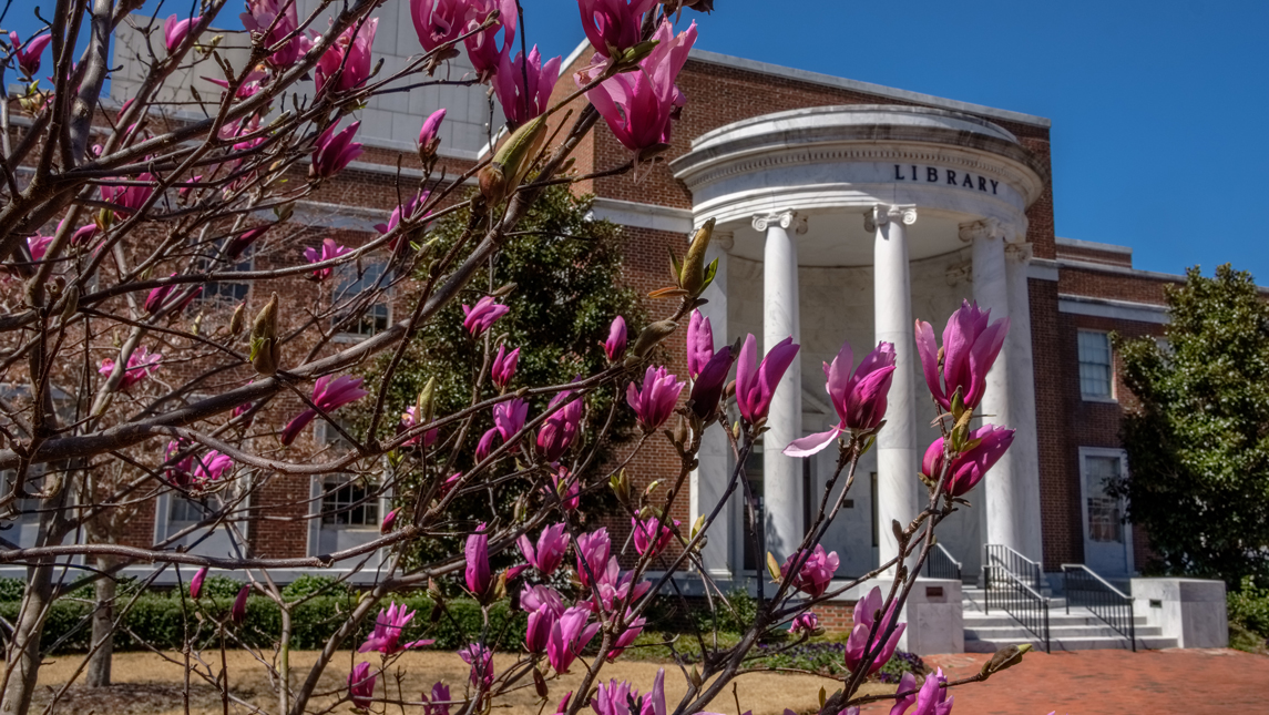 flowers and library facade